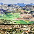 Andalucia Countryside by Artur Bogacki