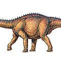 Apatosaurus Dinosaur by Joe Tucciarone