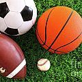 Assortment Of Sport Balls On Grass by Sandra Cunningham