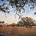 Audubon Golf Course by Ray Devlin