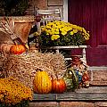 Autumn - Gourd - Autumn Preparations by Mike Savad