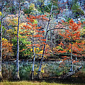 Autumn At Beaver's Bend by Tamyra Ayles