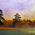 Autumn Morning Mist by Judi Bagwell