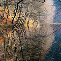 Autumn by Okan YILMAZ