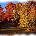 Autumn On Swanson's Path by Liz Evensen