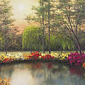 Autumn Sunset by Diane Romanello