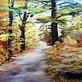 Autumn Walk In The Woods by Trudy Morris