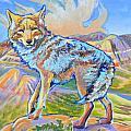 Badland Coyote by Jenn Cunningham