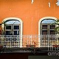 Balcony With Palms by Perry Webster