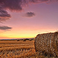 Bales At Twilight by Evgeni Dinev
