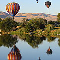 Balloons Over Horse Heaven by Carol Groenen