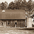 Barn And Silo 1 by Douglas Barnett
