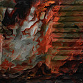 Barn Burning by Jack Zulli