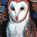 Barn Owl  by Jon Baldwin  Art