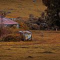 Barn Yard by Tim Nichols