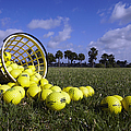 Basket Of Golf Balls by Skip Nall