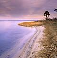 Beach Along Saint Josephs Bay Florida by Tim Fitzharris
