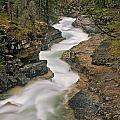 Beauty Creek, Banff National Park by Darwin Wiggett