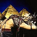 Bellydance of the Pyramids - Rachel Brice Print by Richard Young