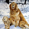 Best Friends by Sandra Chase