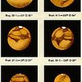 Beyer's Observations Of Mars by Detlev Van Ravenswaay
