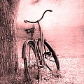 Bicycle in Pink Print by Sophie Vigneault