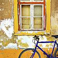 Bike Window by Carlos Caetano