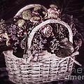 Bittersweet Memories Print by Jutta Maria Pusl