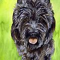 Black Scottish Terrier by Cherilynn Wood