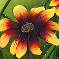Blanket Flower by Trister Hosang