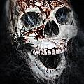 Bloody Skull by Joana Kruse