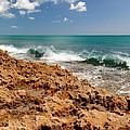 Blowing Rocks Jupiter Island Florida by Michelle Wiarda