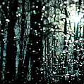 Blue Burns The Twilight by Rebecca Sherman