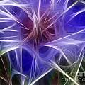 Blue Hibiscus Fractal Panel 2 by Peter Piatt