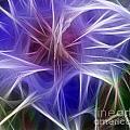 Blue Hibiscus Fractal Panel 5 by Peter Piatt