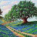 Bluebonnet Road Print by David G Paul