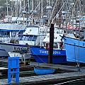 Boats Docked In Harbor by Jeff Lowe