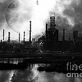 Brave New World - Version 2 - Black And White - 7d10358 by Wingsdomain Art and Photography