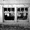 Broken Windows by Cheryl Young