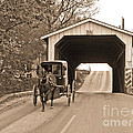 Buggy and Covered Bridge
