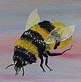 Bumble Bee by Mark Moore