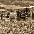 Cabin Fever by Shane Bechler