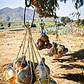 Calabash Gourd Bottles In Mexico by Elena Elisseeva
