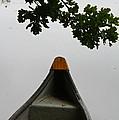 Canoe Too by Odd Jeppesen