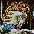 Carousel Horse - 4 by Paul Ward
