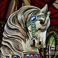Carousel Horse 3 by Paul Ward