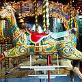 Carrouse Horse Paris France by Garry Gay