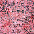 Carvings on Wall Print by Carlos Caetano