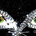 Cat Mask by C Lythgo