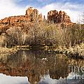 Cathedral Rock Reflections Landscape by Darcy Michaelchuk